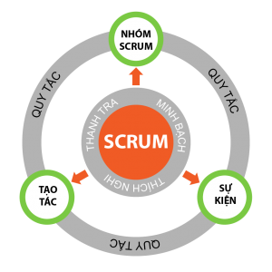 do-hinh-scrum