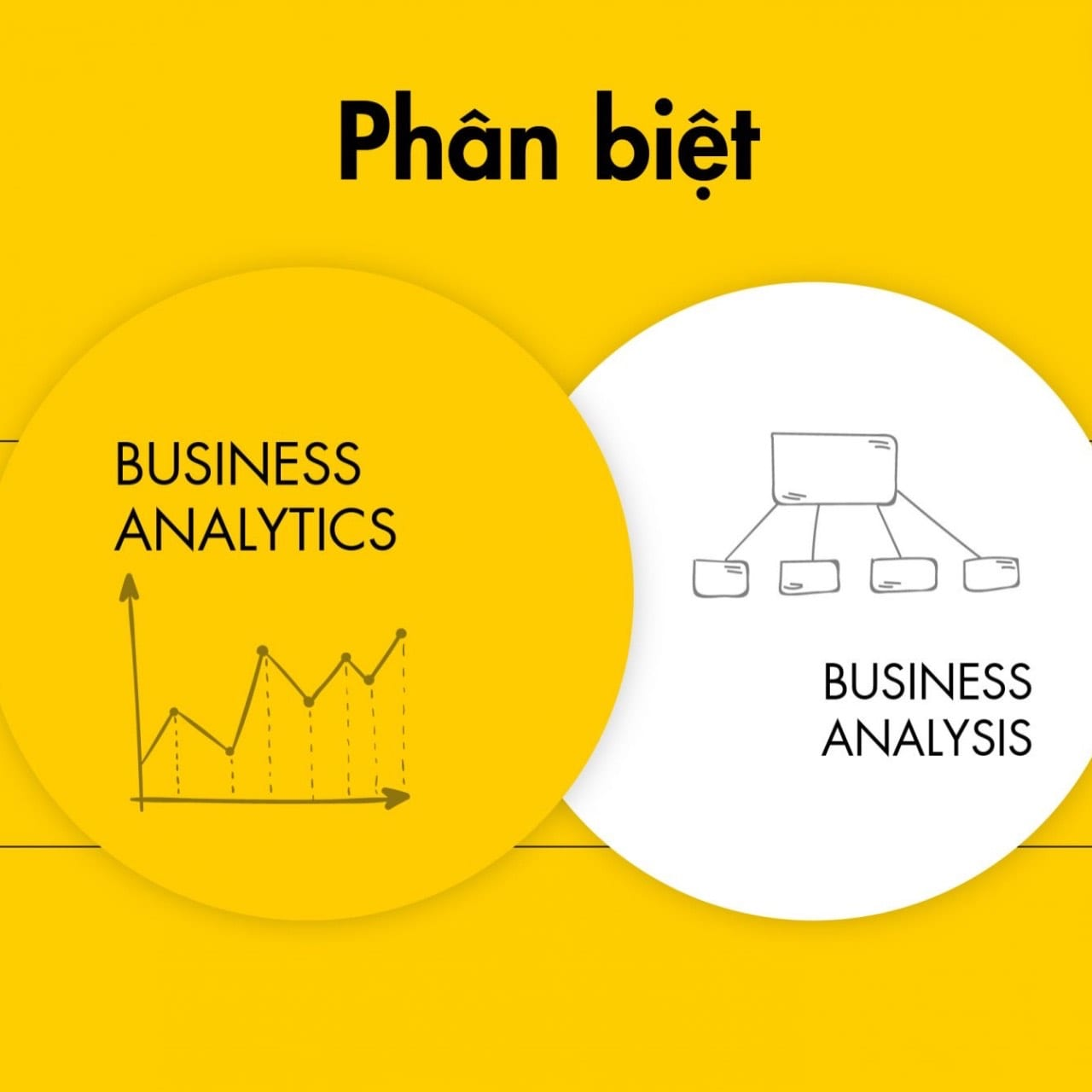 business- analyst- manager